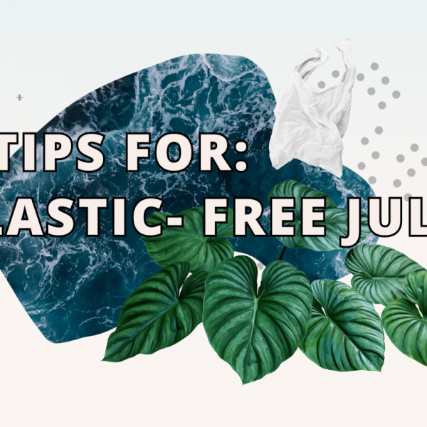 4 Tips for Plastic Free July